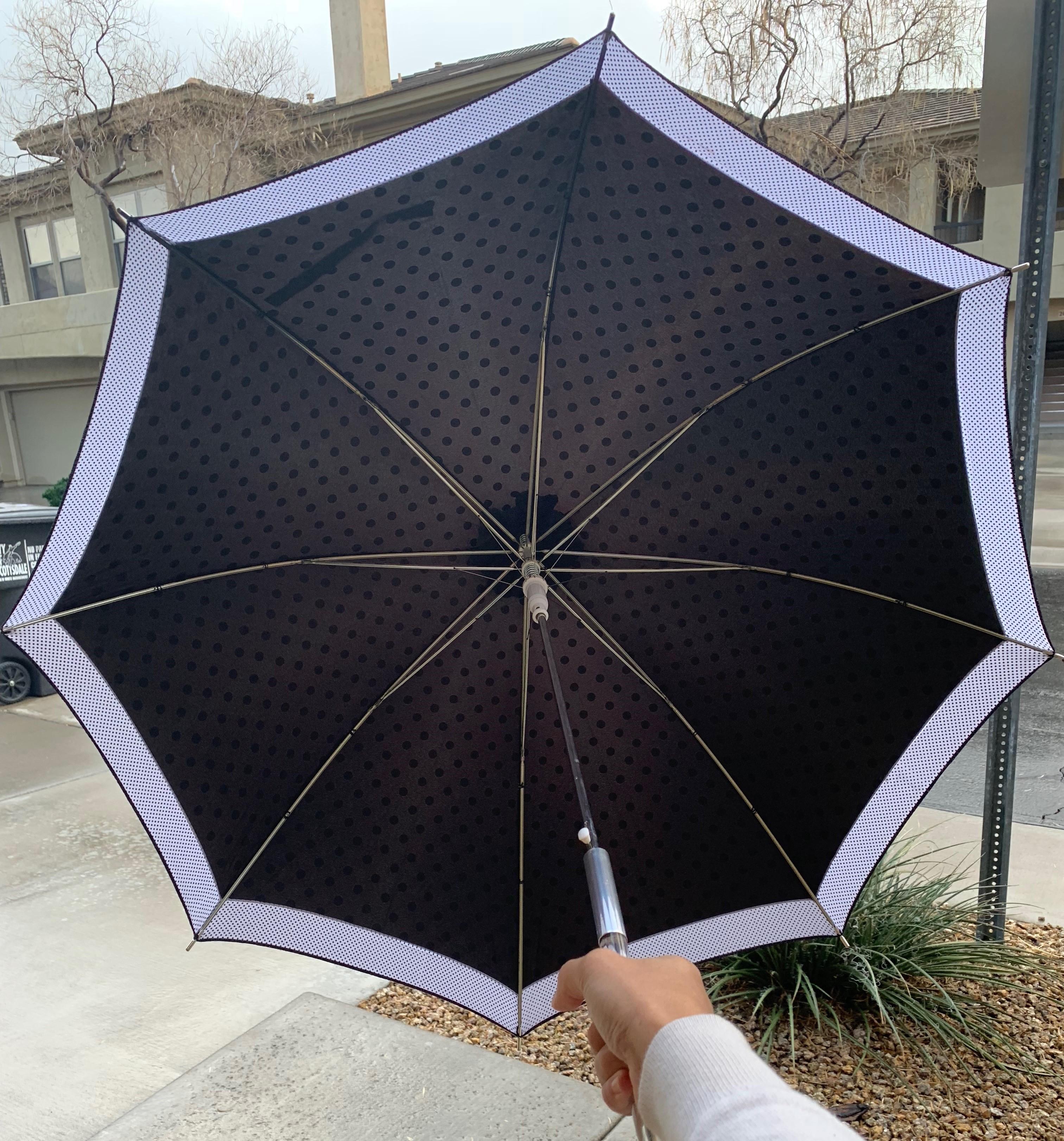 polkadot-umbrella5.jpg
