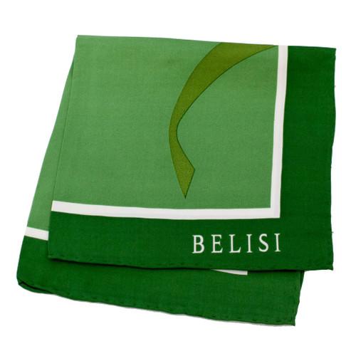 Go Green Silk Pocket Square or Handkerchief by Belisi