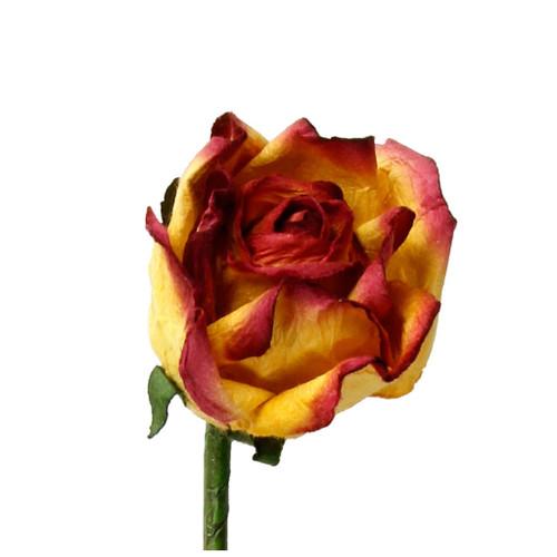 Long Stem Handmade Rose in Antique Gold