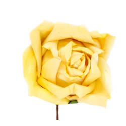 Short Stem Rose in Yellow Set of 6 Roses