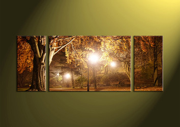 Canvas Prints,landscape prints,scenery canvas prints, forest wall art, night wall art, wall art