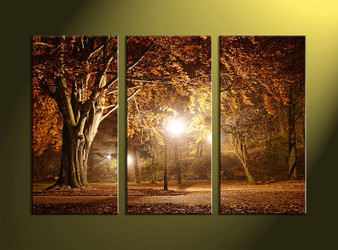 3 Piece Canvas Wall Art, landscape prints, scenery canvas prints, forest wall art, night wall art