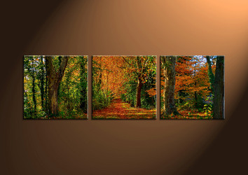 Canvas Prints, landscape prints, scenery canvas prints, wall, forest wall art, nature wall art