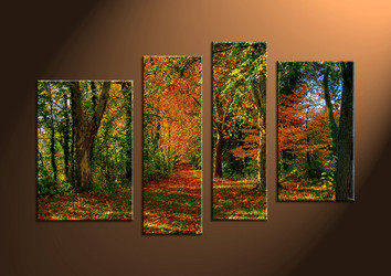 Canvas Prints, landscape prints, scenery canvas prints, wall art, forest wall art