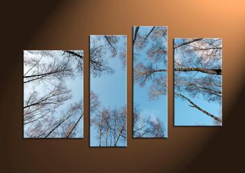 Canvas Prints, scenery canvas prints, nature, wall art, scenery artwork