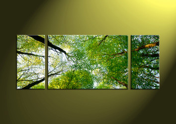 Canvas Prints,scenery canvas prints, wall art , scenery art