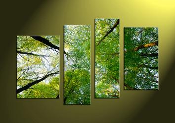 scenery, wall art, forest wall art, nature wall art , scenery art