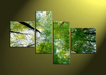 scenery, wall art, forest wall art, nature wall art, scenery art