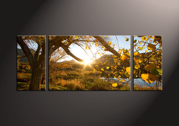 3 Piece Canvas Wall Art, landscape canvas, scenery art, wall artwork