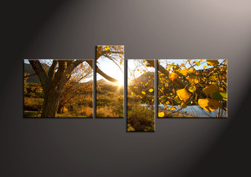 4 Piece Canvas Wall Art, landscape artwork, scenery pictures, scenery wall art, nature canvas print