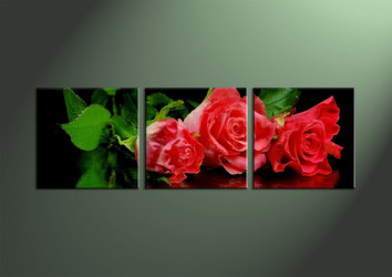 3 Piece Canvas Wall Art, wall art, flower wall decor, flower wall art, flower art