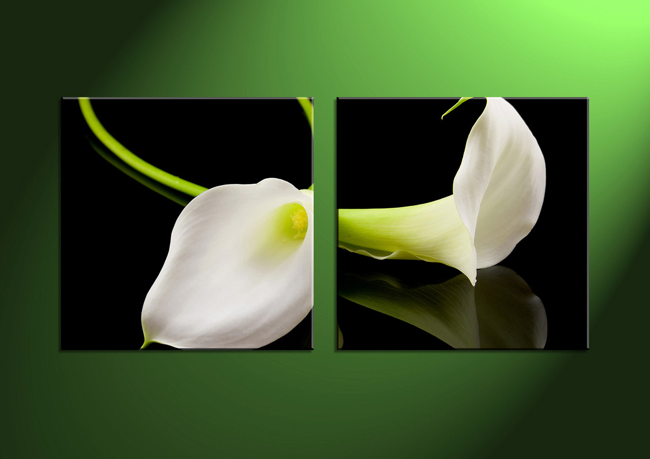 2 piece canvas white flowers picturesblack white artbuy art online