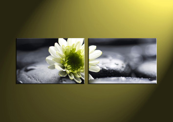 2 Piece Canvas Wall Art, wall art, flower wall decor, flower wall art, flower artwork