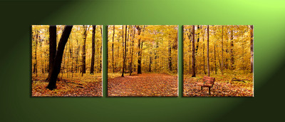 home decor, 3 Piece Wall Art, forest large canvas , scenery canvas art, nature multi panel art