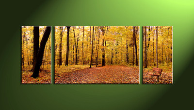 home decor, 3 Piece Wall Art, forest huge canvas art, scenery canvas art, nature multi panel art