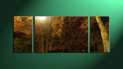 home décor, 3 Piece Wall Art, forest multi panel art, scenery canvas art, nature multi panel art