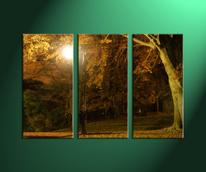home décor,3 piece pictures, nature canvas print, forest canvas print,  scenery large canvas