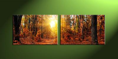 home decor, 2 Piece Wall Art, forest multi panel art, scenery canvas art, nature multi panel art