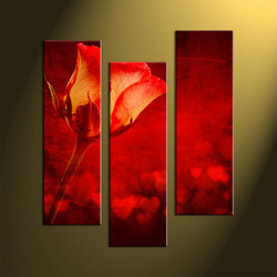 Home wall decor, flower art, scenery wall art, 3 piece photo canvas, red canvas art prints