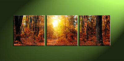 home decor, 3 piece canvas wall art, forest multi panel canvas, scenery canvas art, sunrise group canvas
