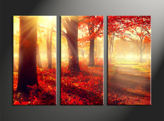 home decor, 3 piece canvas wall art, forest multi panel canvas, scenery canvas art, nature group canvas