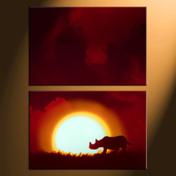 home decor, 2 Piece Wall Art, rhinoceros multi panel art, scenery canvas art, animal multi panel art