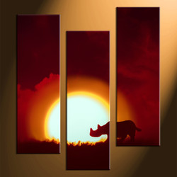 home decor, 3 Piece pictures, rhinoceros multi panel art, scenery canvas art, animal canvas art prints