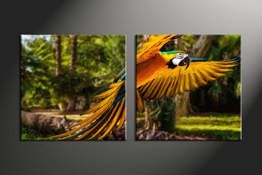 home decor, 2 piece canvas wall art, forest multi panel canvas, parrot canvas art, wildlife group canvas