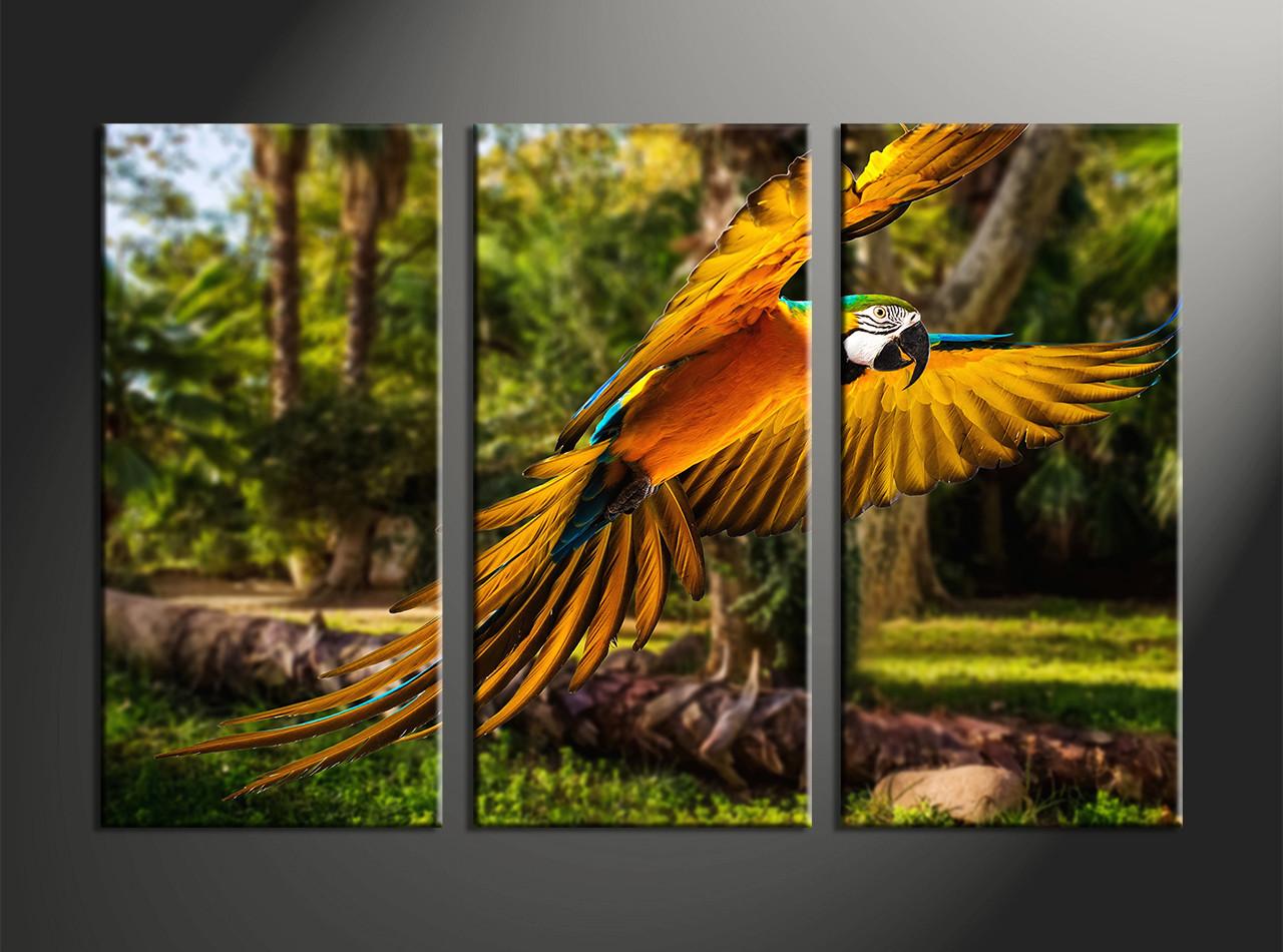 Home Decor 3 Piece Canvas Wall Art Forest Parrot