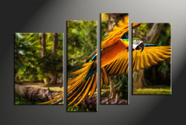 home decor, 4 piece pictures, forest multi panel canvas, parrot canvas art, wildlife group canvas