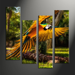 wildlife group canvas, home decor, 4 piece pictures, forest multi panel canvas, parrot canvas art,
