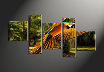 wildlife group canvas, home décor, 5 piece pictures, forest multi panel canvas, parrot canvas art,