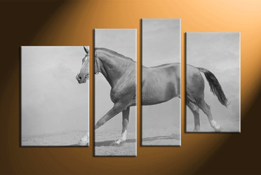 home decor, 4 Piece Wall Art, horse multi panel art, black and white  canvas art, animal large pictures