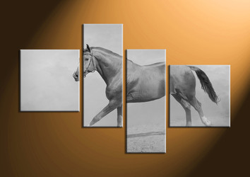 home decor, 4 Piece Wall Art, horse large pictures, black and white  canvas art, animal large pictures