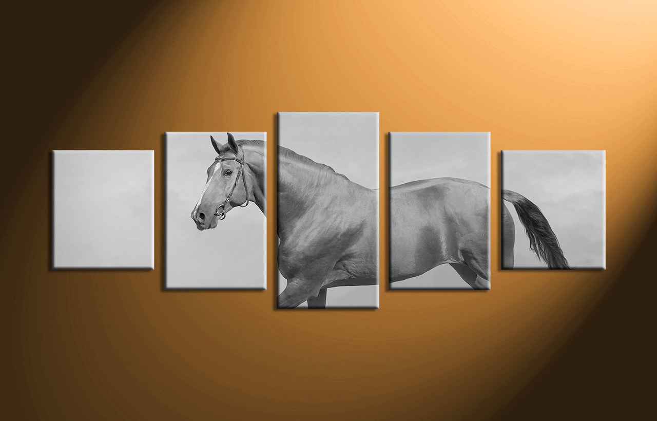 Home decor 5 piece wall art horse artwork black and white canvas art