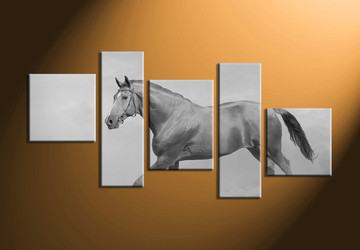 home decor, 5 Piece Wall Art, horse artwork, black and white  canvas art, animal large pictures