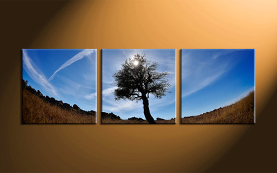 home decor, 3 piece canvas wall art, nature multi panel canvas, scenery canvas art, nature group canvas