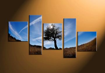 home decor,5 piece canvas art prints, forest canvas print, nature canvas print,  sunrise photo canvas