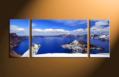 home decor,3 piece wall art, landscape canvas print, lion canvas print,  white lion photo canvas