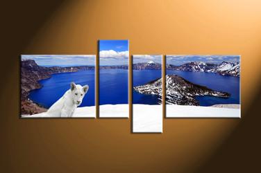 home decor,4 piece canvas art prints, landscape canvas print, lion canvas print,  white lion photo canvas