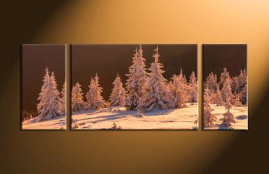 fig tree pictures, home décor,3 piece canvas art prints, landscape pictures, nature multi panel art,