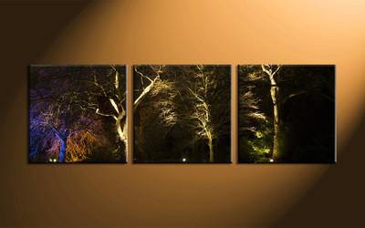 home decor,3 piece canvas art prints, forest canvas print, dark forest canvas print,  scenery photo canvas
