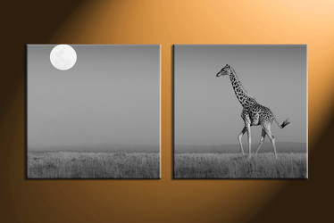 home decor,2 piece canvas art prints, black and white canvas print, wild canvas print,  animal photo canvas