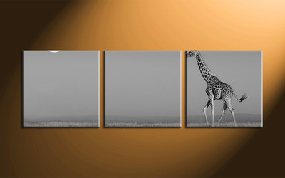 home decor,3 piece canvas art prints, black and white canvas print, wild canvas print,  animal huge canvas art