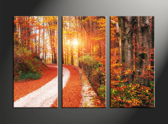 home decor, 3 piece canvas art prints, forest artwork, forest large canvas, scenery pictures