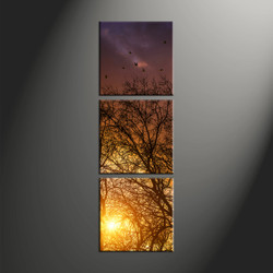 home décor, 3 piece canvas art prints, scenery canvas art prints, sunrise huge canvas art, forest large pictures