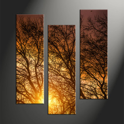 forest large pictures,home décor, 3 piece canvas art prints, scenery canvas art prints, sunrise huge canvas art