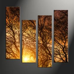 forest large pictures,home décor, 4 piece canvas art prints, scenery canvas art prints, sunrise artwork