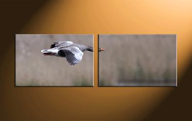 home decor, 2 piece canvas art prints, wildlife canvas print, bird huge canvas art, wildlife canvas wall art