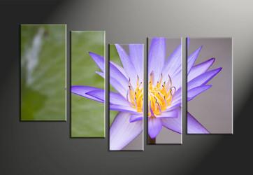 home décor, 5 piece canvas art prints, flower canvas art prints, floral huge canvas art, lily huge canvas art